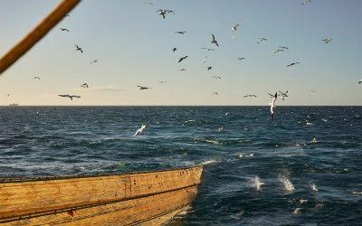Fiskeafgiftsfonden åbner for ansøgninger