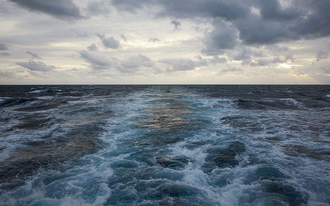 Seaspiracy – forvaltningen af havets ressourcer er et fælles ansvar